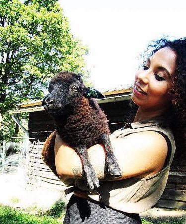 Work-life balance, SImone Luchesi, Black Sheep Indie, Solliciteren als Beroep!, werk, privé, balans zoeken