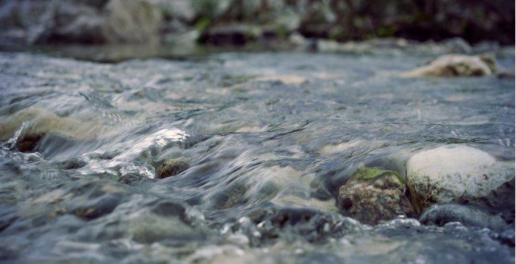 Are younin your flow today?, Ingrid van den Broek over flow en het luisterne naar je innerlijke stem