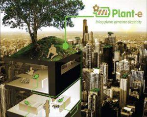 plant e visual