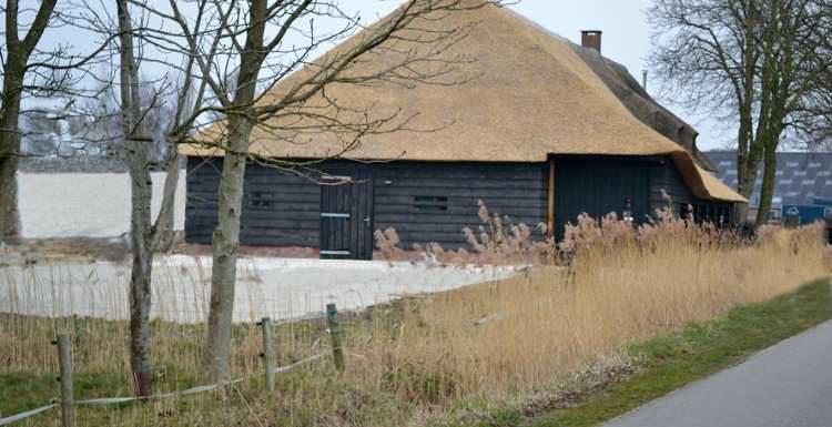 In gesprek met ....Dyann van Alderen van Dorpsbrouwerij De Pimpelmeesch