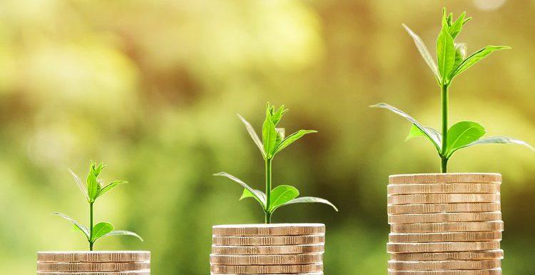 Groei! marketingpakketten en aanbod van dinesten en producten voor vrouwelijke ondernemers om hen te helpen groeien
