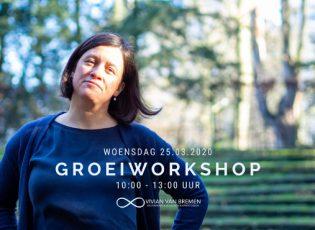 Vivian van Bremen Groeiworkshop