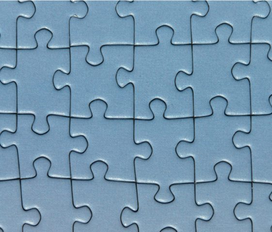 Big 5 GoOrNoGo puzzelstukjes op hun plaats het reusltaat is Canvas
